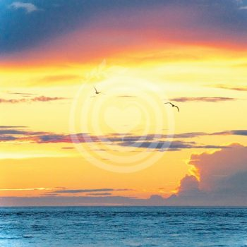 Ciel de Gaspésie